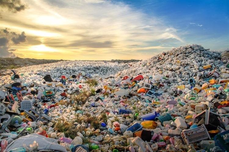 埃及如何摆脱一次性塑料袋?